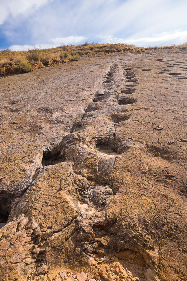 Dinosaur Trackways - Toro Toro National Park