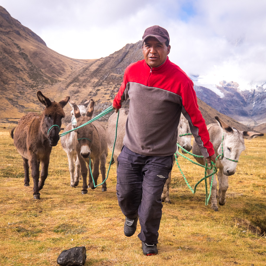 Elijio with donkeys - Huayhuash