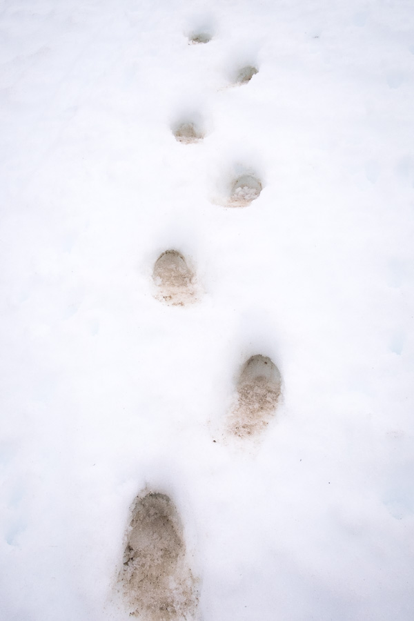 Dirty bootprints in pristine white snow