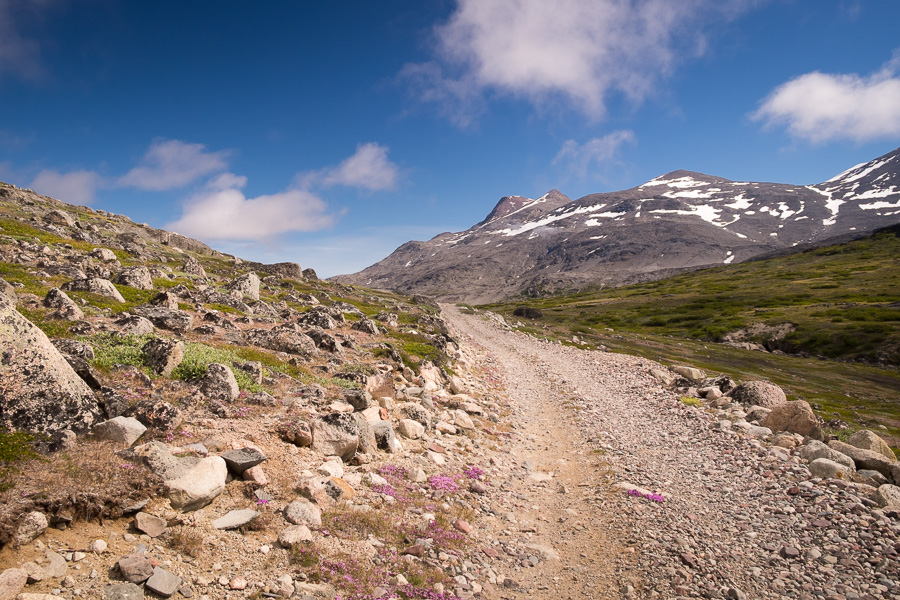 The road is made from pebbles, which make hiking along it very difficult. Near Igaliku in South Greenland