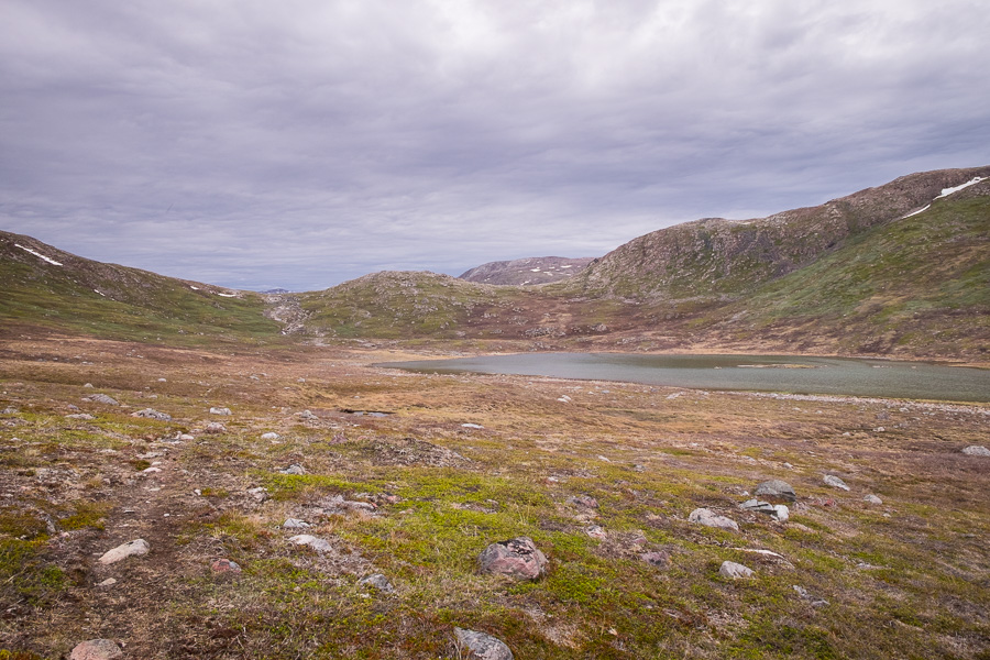 A small lake and arctic vegetation, looking up at the rise I was hiking to in my excursion off the Waterfall Hike near Igaliku in South Greenland