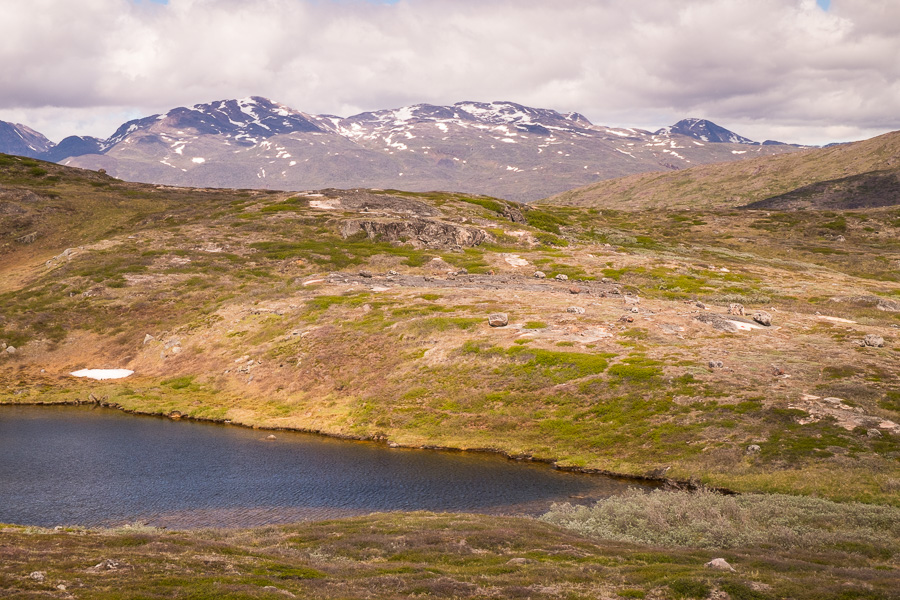 View of arctic vegetation and a very difficult to see red dot marking the trail from Sillisit to Qassiarsuk via Nunataaq in South Greenland