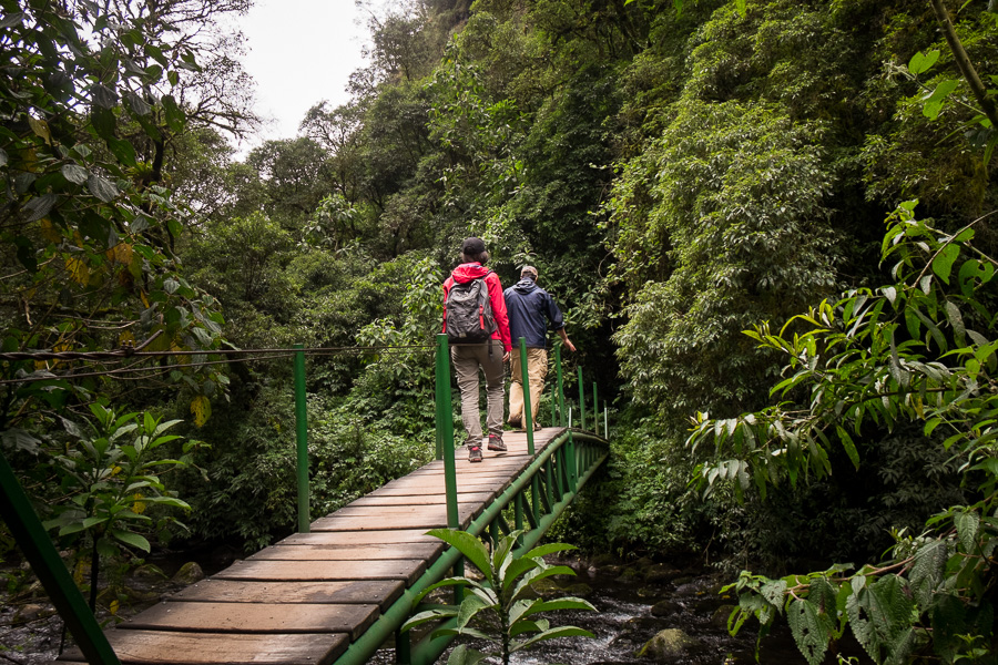 My hiking companions crossing one of the many bridges along the trail to that Cascada Condor Machay near Quito, Ecuador