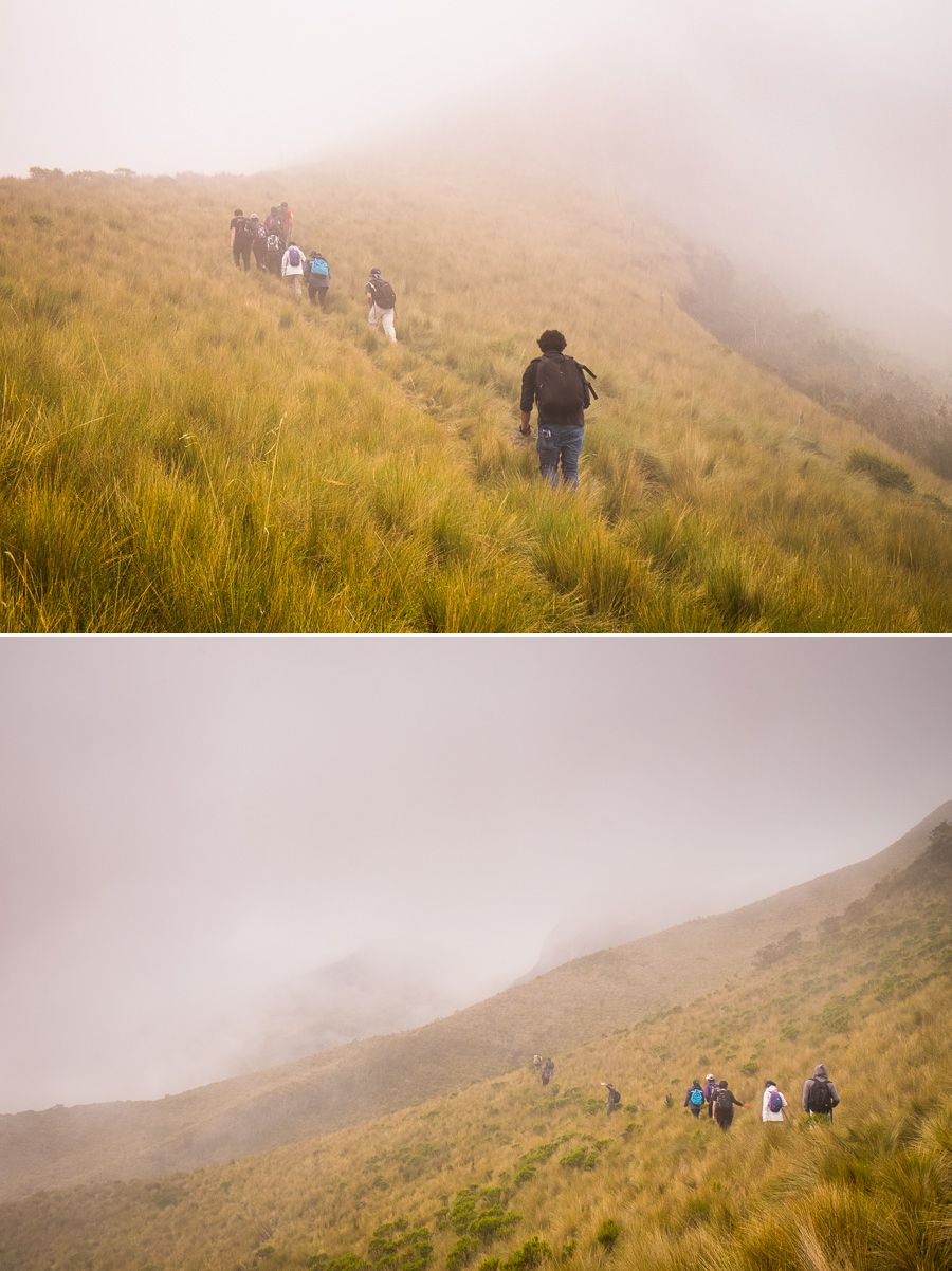 The group hiking through fog and the Páramo, en-route to the summit of Volcán Pasochoa near Quito, Ecuador
