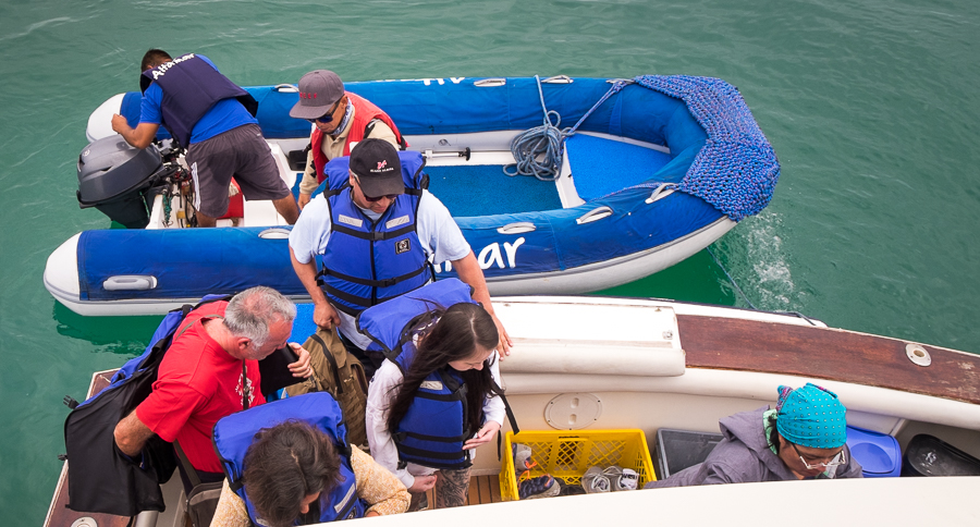 Fellow passengers climbing onto the AltaMar boat from the zodiac transfer