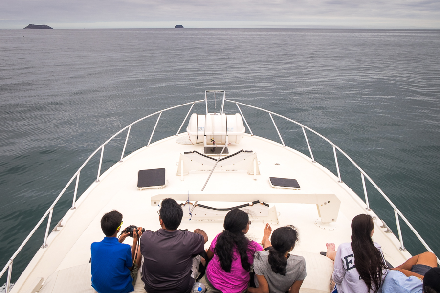 View from the upper deck of the Altamar boat heading to North Seymour Island, Galapagos