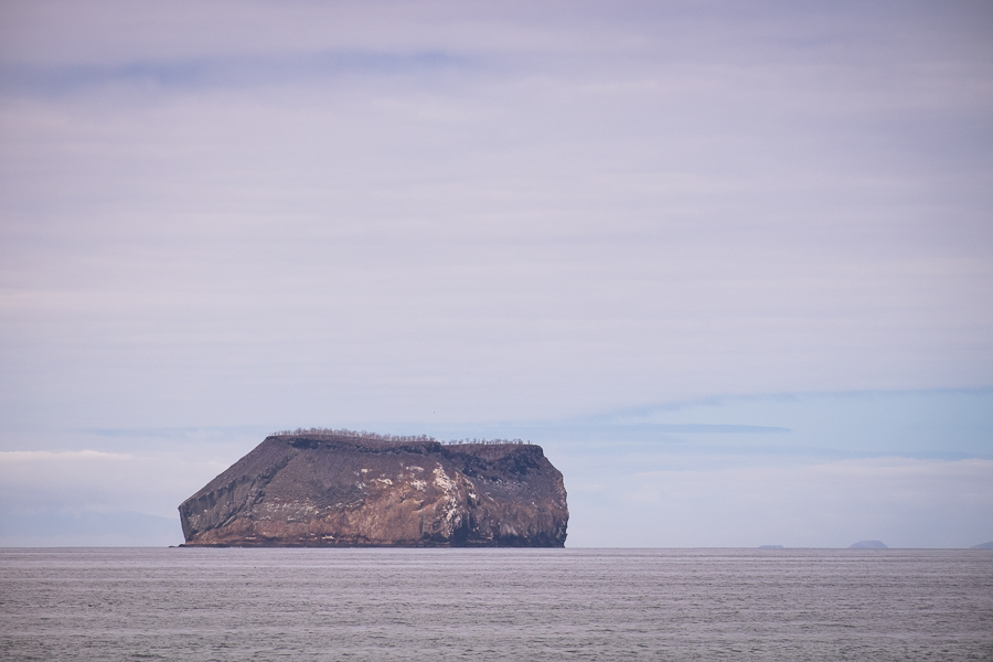 View of Daphne Major Island on the way to North Seymour Island, Galapagos