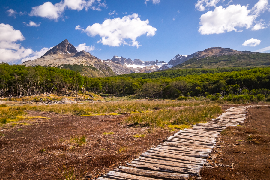 Log paths across the peat bog - Laguna Esmeralda near Ushuaia, Argentina