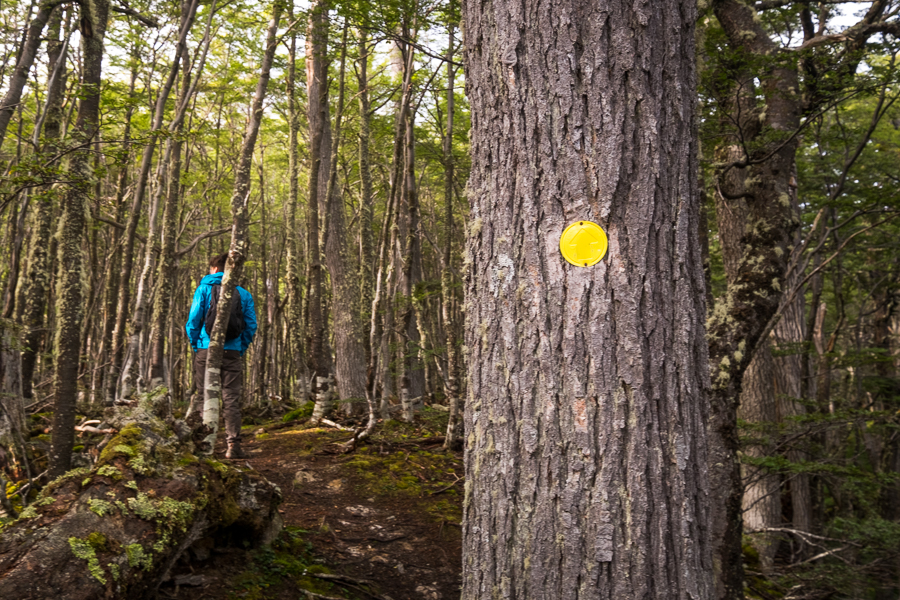 Yellow dots marked the start of the trail to the Valle de Olum and Laguna Bélgica - Ushuaia - Argentina