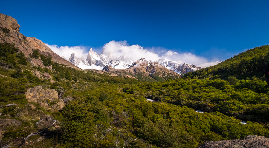 Approaching Poincenot campsite through the Lenga forest - El Chaltén - Argentina