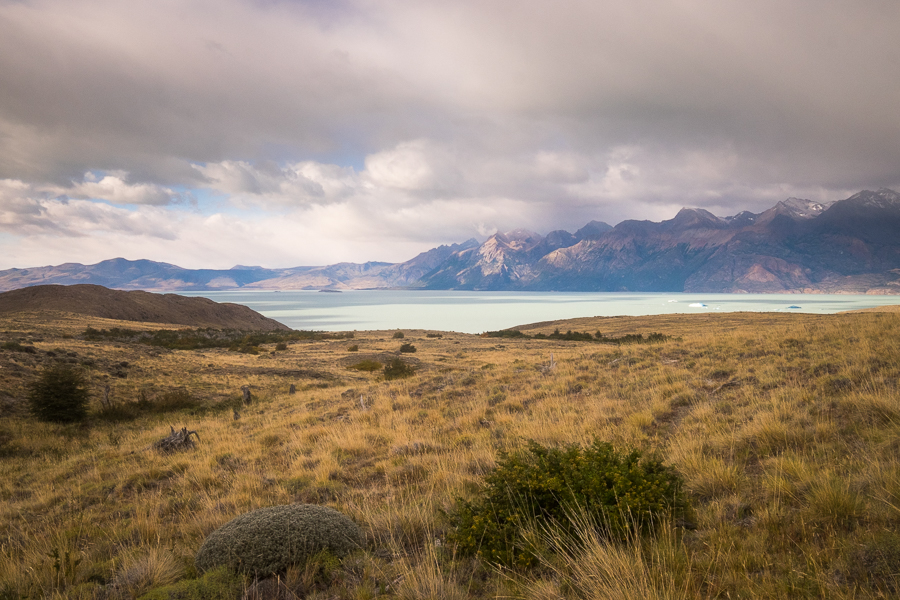 Steppe vegetation and Lago Viedma - South Patagonia Icefield Expedition - Argentina