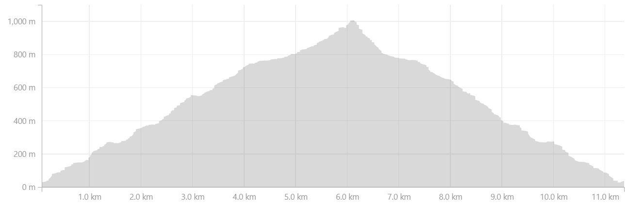 Altitude profile of hike to Mt Kuummiut on Day 5 of Icefjords and Remote Villages Trek - from Strava