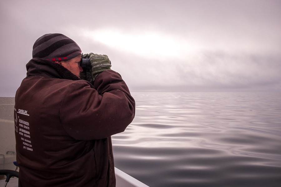 Jan with binoculars scanning the ocean for wildlife from his boat - Sisimiut - West Greenland