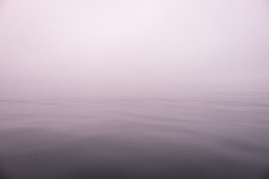 Image of fog over water where it difficult to tell where one ends and the other begins - Sisimiut Sea Safari - West Greenland
