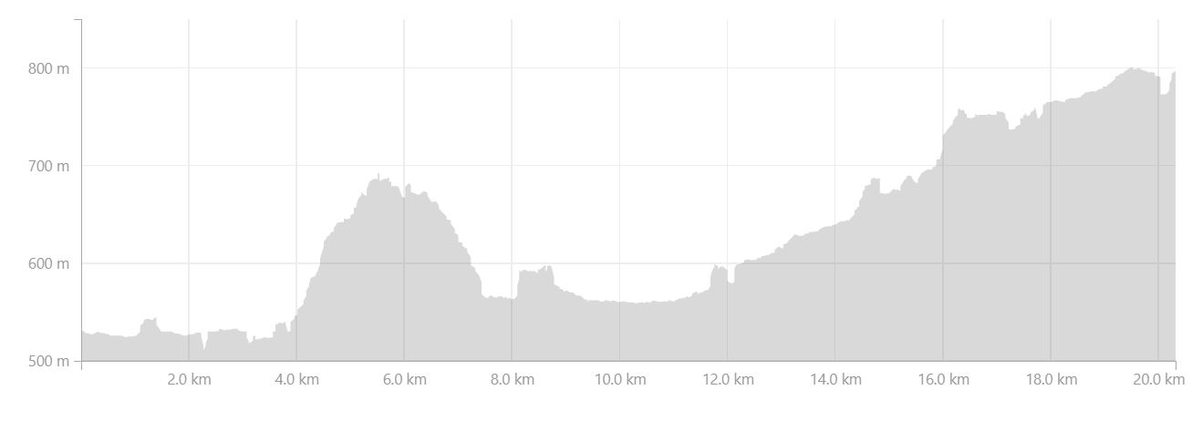 Altitude profile of the hike from Álftavatn to Dalakofinn in the Central Highlands of Iceland - from Strava