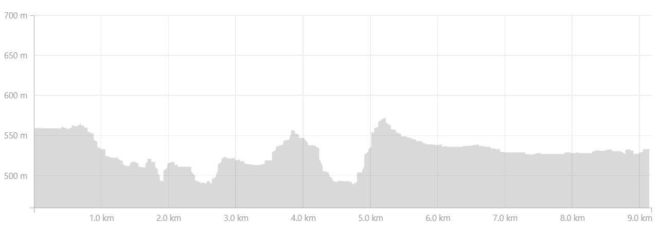Altitude profile of the hike from Hvanngil to Álftavatn in the Central Highlands of Iceland - from Strava