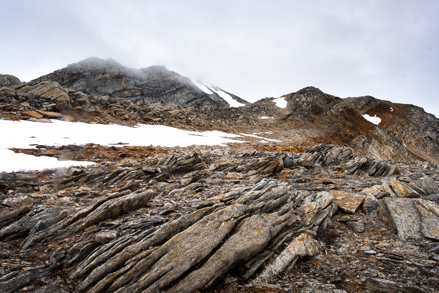 Greenlandic rocks and the summit of Mt Kuummiut disappearing once again into fog - East Greenland