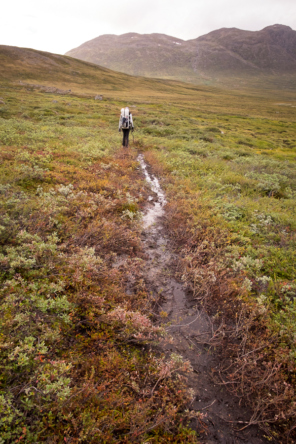 A muddly  Arctic Circle Trail - West Greenland