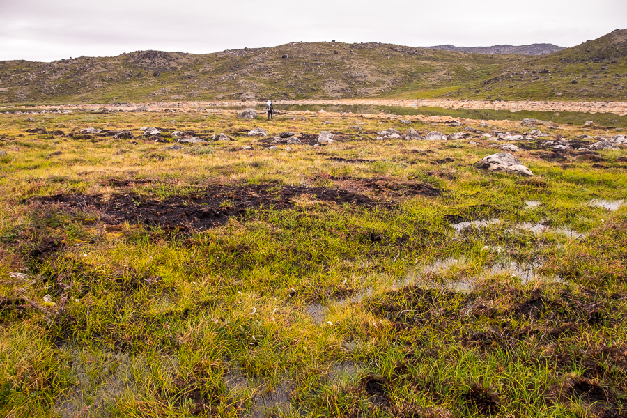 Boggy sections of the Arctic Circle Trail - West Greenland