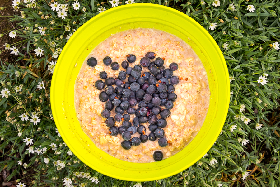Plate of porridge and wild blueberries - standard breakfast along the Arctic Circle trail in West Greenland
