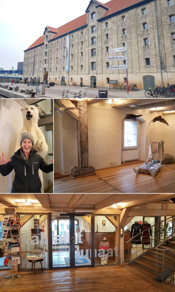 Images from our visit to the Visit Greenland offices include the amazing building, a polar bear, dog sled and other traditional Greenlandic items