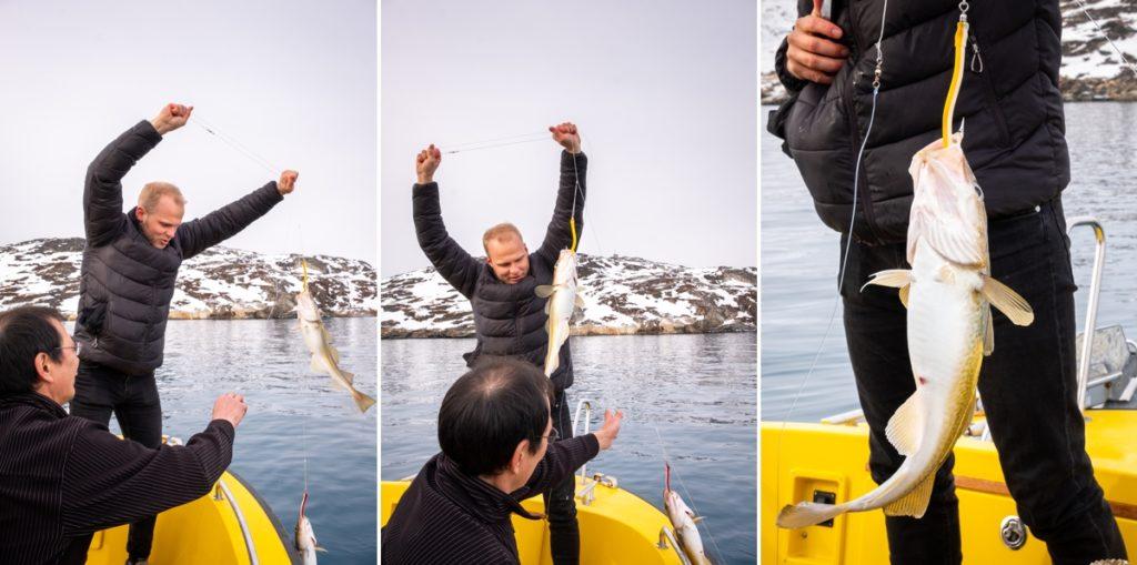 Catching cod on a Nuuk Fjord trip - West Greenland
