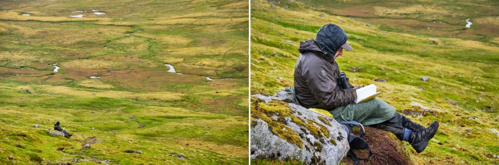 Arctic Fox research volunteer monitoring a den of foxes - Hornbjarg - Hornstrandir - Iceland