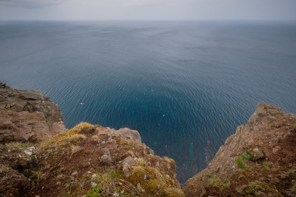 Looking straight down at the ocean from the Hornbjarg Cliffs - Hornstrandir - Iceland