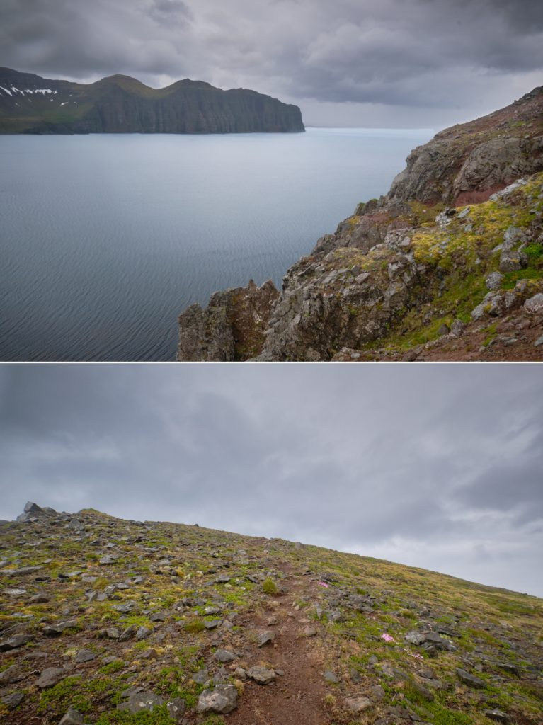 Views of the trail and the ocean as I hike the ridge to Hornbjarg - Hornstrandir - Iceland