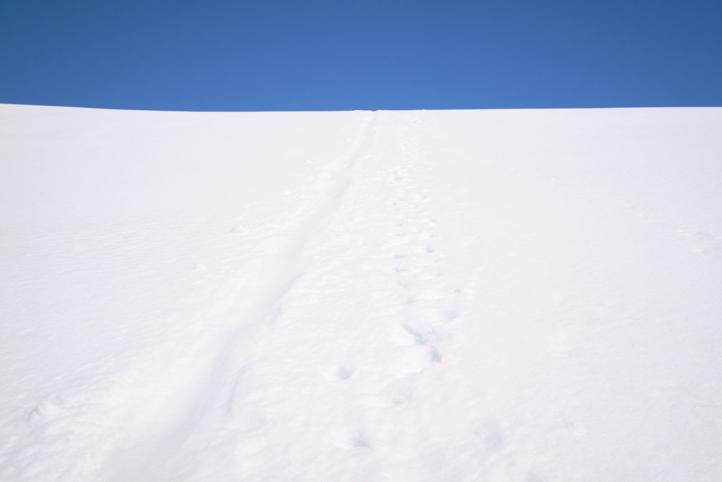 bum trail and bootprints in the snow leading to the pass - Hornstrandir - Iceland