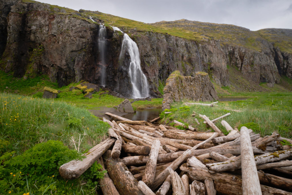Waterfall with driftwood logs - Hornstrandir - Iceland