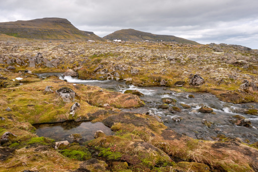A stream on the way from Hornbjargsviti to Hornvik - Hornstrandir - Iceland