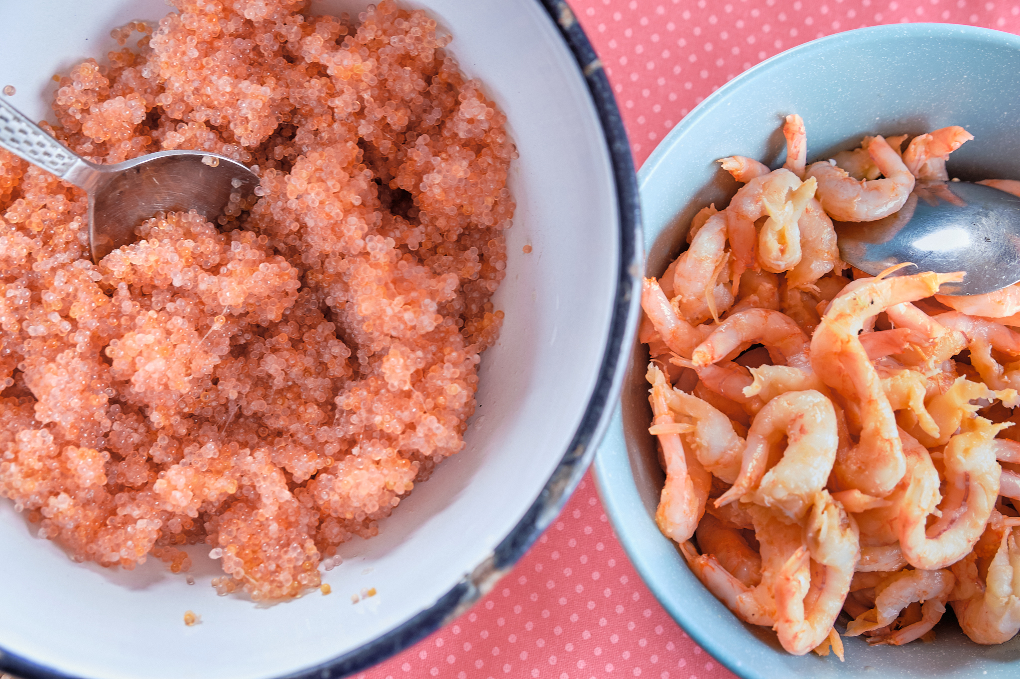 lumpfish roe and prawns for lunch at sassannguit near Sisimiut - Greenland